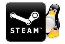 Client Linux beta di Steam disponibile!
