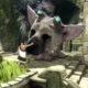 Sony non vuole far trapelare notizie su The Last Guardian