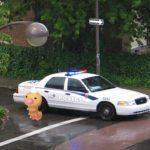 Pokémon GO: un ragazzo tampona l'auto della polizia
