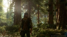 Days Gone poteva avere una componente multiplayer, ma…