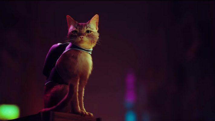 Stray è il nuovo videogioco di Annapurna, tra cyberpunk e gatti randagi