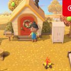 Animal Crossing: New Horizons novembre
