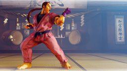 Street Fighter V Dan