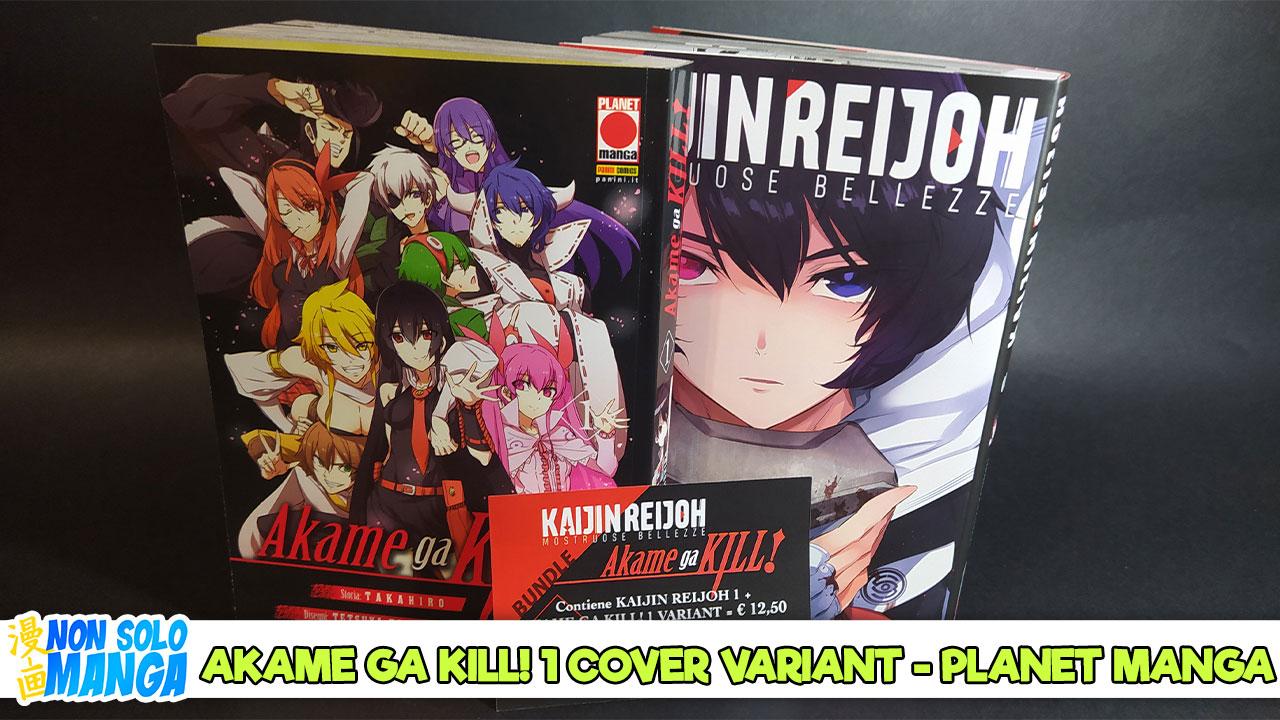 Akame ga Kill Cover Variant
