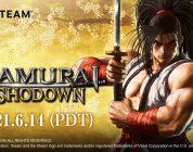 Samurai Shodown Steam