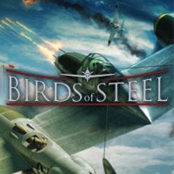 Birds of Steel – La Recensione