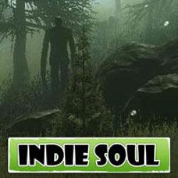 Indie Soul – Weekly Summary 12
