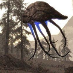 Dragonborn disponibile su PC!