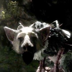 The Last Guardian non sarà mostrato all'E3 2013!