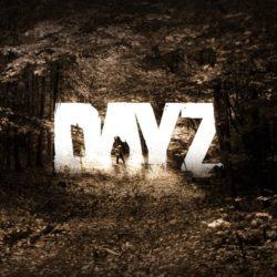 La fase alpha di DayZ si allontana indefinitamente…