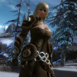Guild Wars 2 ha un nuovo record!
