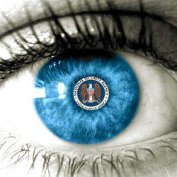 La NSA starebbe spiando i videogiocatori online?