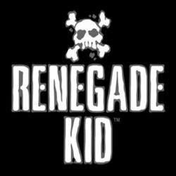 Renegade Kid fa teasing per un annuncio 3DS