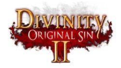 Divinity: Original Sin II-Online video sulla Co-op