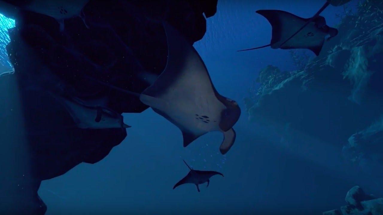 ocean-descent-2