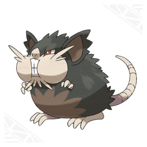 raticate-di-alola-nuovi-pokemon-gamesoul