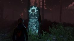 Through the Woods – Recensione