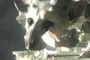 "Sony: Nessuna novità per ""The Last Guardian"""