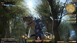 Final Fantasy XIV: nuove immagini per la versione PS3