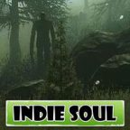 Indie Soul – Weekly Summary 12