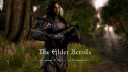 The Elder Scrolls Online – Guida alle Emote e ai comandi Chat