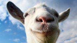 Ecco le prossime aggiunte di Goat Simulator con la Patch 1.1