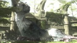 The Last Guardian cancellato? Sony nega tutto!