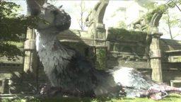 The Last Guardian cancellato? Sony nega tutto!