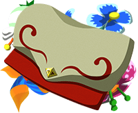 Zelda Wind Waker HD Wii U - Cartella
