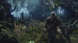The Witcher 3: video gameplay direttamente dalla gamescom 2014