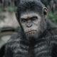 Popcorn Time: Apes Revolution – Il Pianeta delle Scimmie