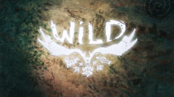 WiLD, uomo e natura insieme
