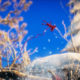 Unravel ha finalmente una data di lancio!