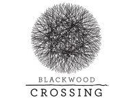 Blackwood Crossing – Anteprima gamescom 2016