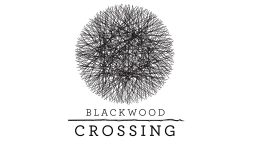 Blackwood Crossing – Anteprima gamescom 2016