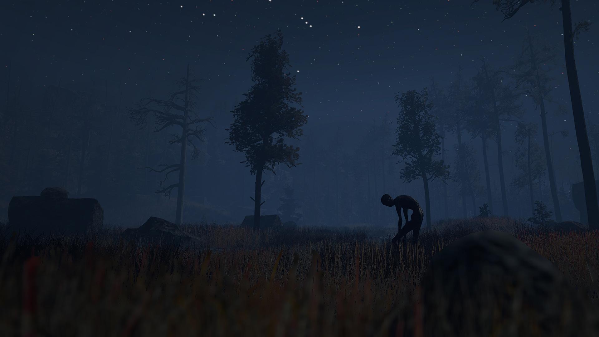 through-the-woods-anteprima-gamescom-2016-gamesoul-01