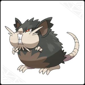 raticate-di-alola-nuovi-pokemon-gamesoul