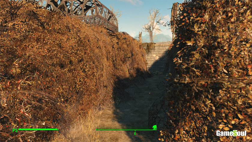 Fallout 4: Guida ai Cappy - Cappy E