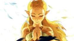 The Legend of Zelda, svelato l'Expansion Pass