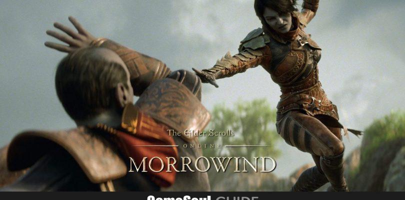The Elder Scrolls Online: Guida al PvP