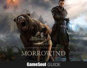 The Elder Scrolls Online: Guida alla classe Warden