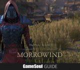 The Elder Scrolls Online: Come ottenere il costume The Scarlet Judge – Guida