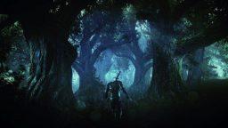 The Witcher 4 non si farà, ma un nuovo capitolo probabilmente sì
