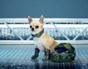 Il cane è il miglior amico… di Xbox One