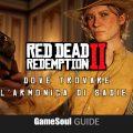 Red Dead Redemption II – Dove trovare l'Armonica di Sadie | Guida