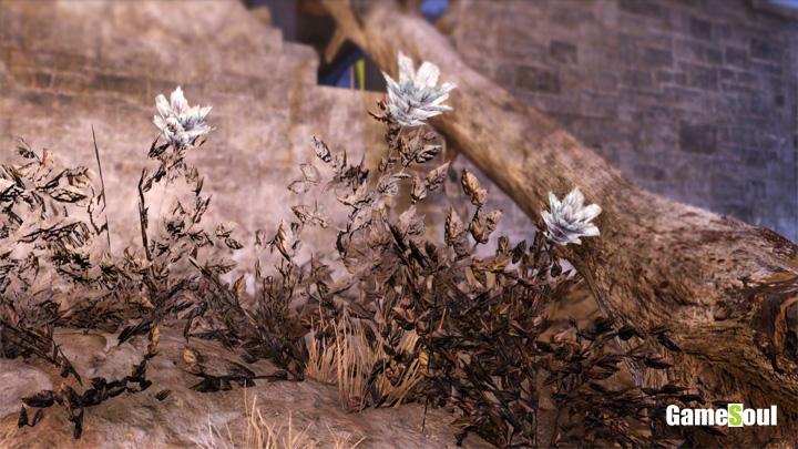 Fallout 76 - Dove trovare Fiore della Fuliggine Tossico   Guida