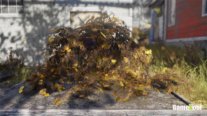 Fallout 76 - Dove trovare Frutto mutato   Guida