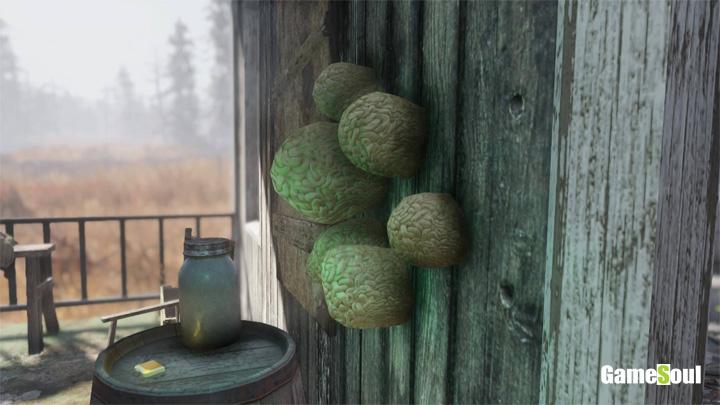 Fallout 76 - Dove trovare Fungo Mentale   Guida