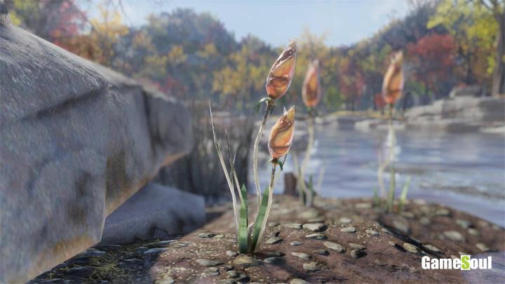 Fallout 76 - Dove trovare Snaptail   Guida
