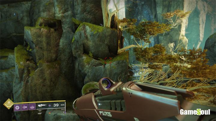 Destiny 2 - Dove trovare tutti i gatti